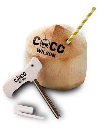 Profesionalhoreca-agua-de-coco