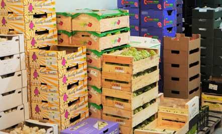 Cajas de frutas y verduras en el almacén de +Bio