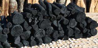 Carbón de encina: todo un lujo para los asadores