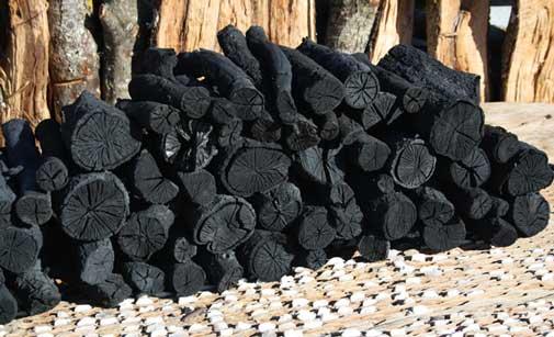 Carbón vegetal natural de leña de encina de Todobrasa