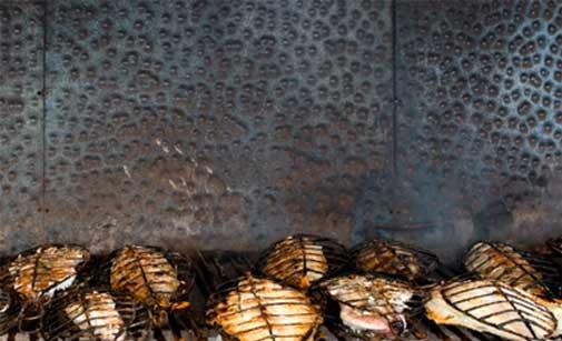 Parrilla del restaurante Kaia Kaipe de Getaria (Guipúzcoa)