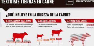 Texturas tiernas en la carne: infografía de Distform