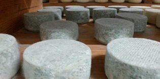 Q de Quesos, nuevo evento dedicado al mundo del queso