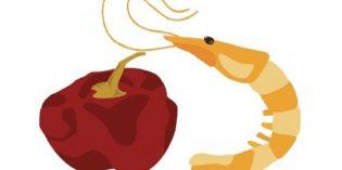 Concursos gastro: Ñora y Langostino, Cocina con AOVE, Cortadores de Jamón
