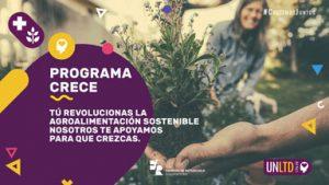 Logo del Programa Crece