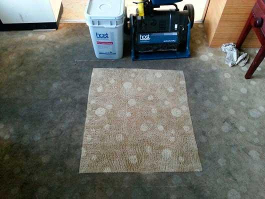 La revoluci n en la limpieza en seco de moquetas y - Limpiar alfombras en seco ...