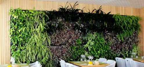Jardín vertical interior de Air Garden en el restaurante Abbaco de Palma de Mallorca