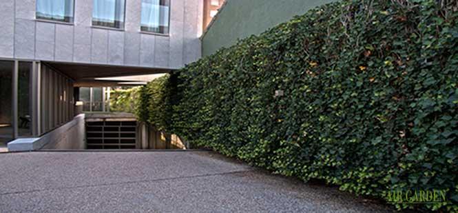 El jardín vertical en la zona de acceso al garaje