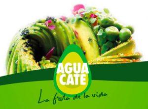 Imagen de la campaña Aguacate, fruta de la vida