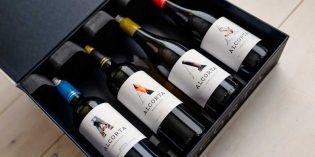 Los nuevos vinos de Alcorta para la hostelería