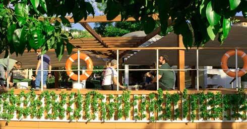 Profesionalhoreca, Optimus Garden. huerto vertical