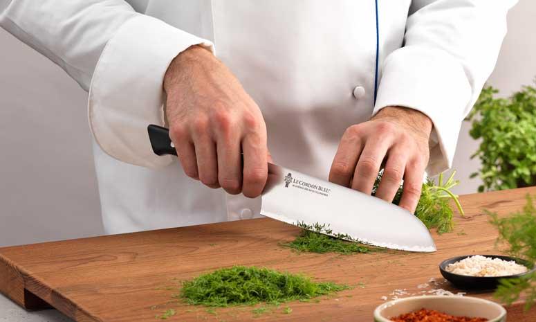 Profesionalhoreca, Zwilling, cuchillo, Le Cordon Bleu