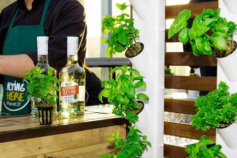 Profesionalhoreca, Optimus Garden. cocktail bar