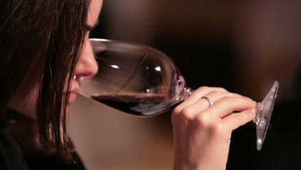 profesionalhoreca Bacchus, cata de vino