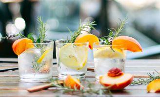 profesionalhoreca gin tonic