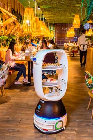 Profesionalhoreca, robot camarero, restaurante Amazonia