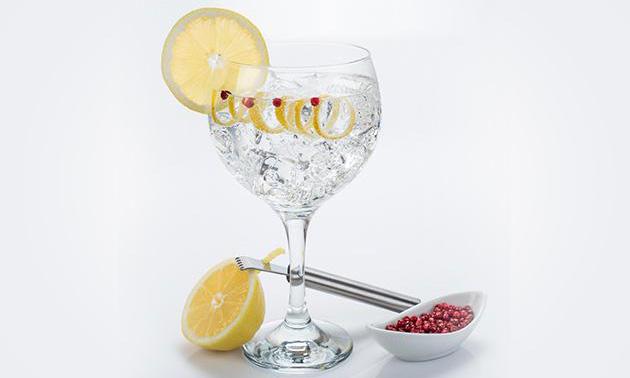 Profesionalhoreca. gin-tonic, Schweppes