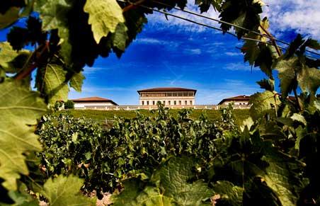 Profesionalhoreca, bodega Rioja Vega