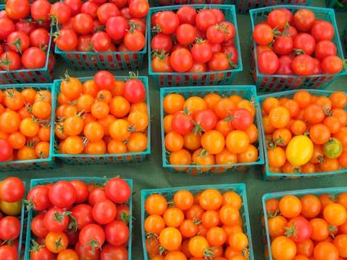 Profesionalhoreca, tomates