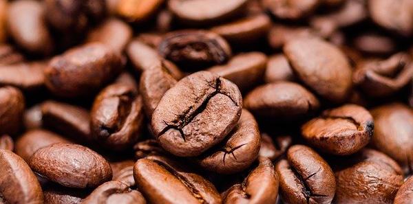 Profesionalhoreca, café en grano