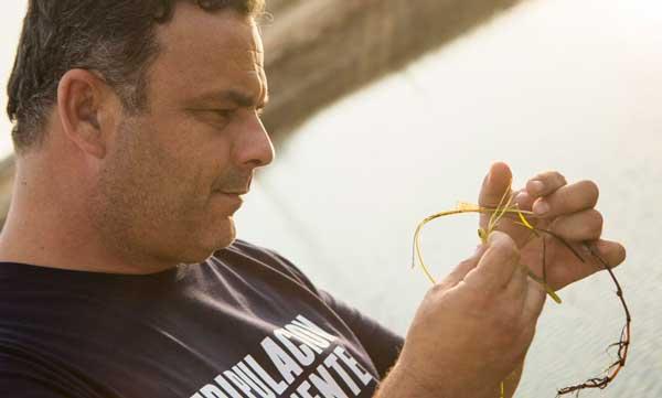 Profesionalhoreca, Angel León con la zostera marina, planta de la que procede el arroz de mar