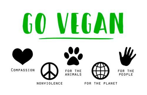 Proefsionalhoreca, cartel en inglés de hazte vegano