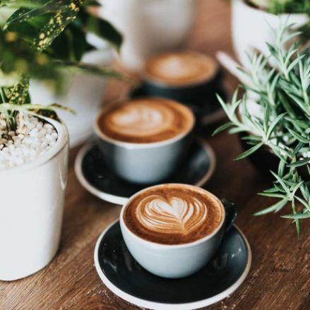 Profesionalhoreca, tazas de café