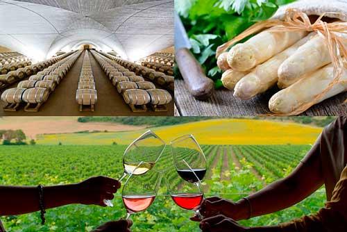 Profesionalhoreca, cartel de Foodtrex Spain
