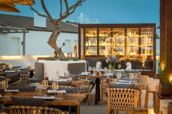 Profesional Horeca Restaurante Godai